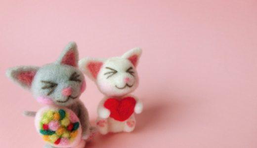 【猫の里親になりたい】同棲中カップルが猫の里親を断られやすいって本当?理由と対策